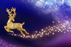 Волшебство рождества с золотым северным оленем Стоковое Изображение