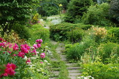 волшебство сада Стоковое фото RF