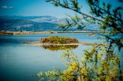 воды великобританской точной бирюзы валов вертела песка рая ладони островов острова песочной виргинские белые Стоковое Фото