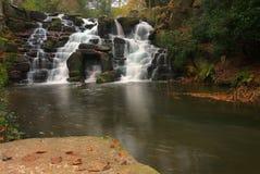 Воды девственницы Стоковое Фото