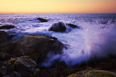 Воды тревоги Стоковые Фотографии RF