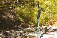 Водяная помпа руки Стоковые Фотографии RF