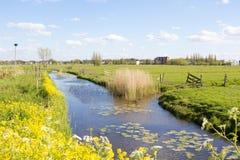 Водяной канал в Kinderdijk, Голландии Стоковая Фотография RF