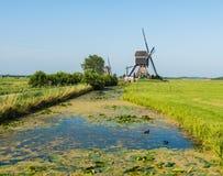 2 водяной мельницы в Нидерландах Стоковое Фото