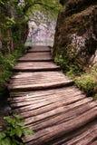 вперед путь Стоковая Фотография RF