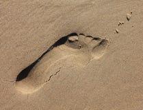 Впечатление следа ноги песка Стоковое Изображение