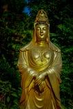 Впечатляющие золотые статуи на 10 тысяч монастыре Buddhas в олове Sha, Гонконге Стоковое Фото