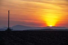 Впечатляющий заход солнца над вспаханным аграрным полем стоковая фотография