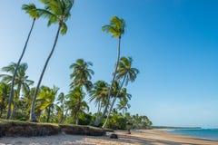 Впечатляющий пляж рая на Itacare Бахи Бразилии Стоковое Изображение RF