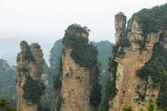 Впечатляющие штендеры песчаника в районе Yangjiajie Стоковые Изображения RF