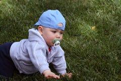 вползать младенца Стоковое Фото