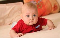 вползать младенца Стоковое Изображение RF