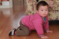 вползая малыш пола Стоковые Изображения RF