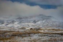 вполне счастлива те I если горы изображения благодарят использовано, то где зима а вы Ландшафт рождества на солнечном утре Стоковая Фотография RF