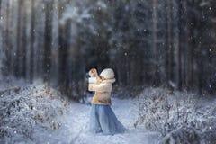 вполне сказка счастливая те I если изображение благодарит использовано, то где зима а вы стоковая фотография