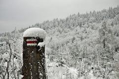 вполне счастлива те I если горы изображения благодарят использовано, то где зима а вы Стоковая Фотография