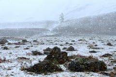 вполне счастлива те I если горы изображения благодарят использовано, то где зима а вы Стоковое Фото