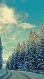 вполне счастлива те I если горы изображения благодарят использовано, то где зима а вы Стоковое фото RF