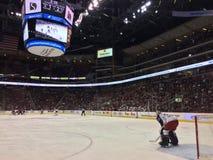 Вратарь хоккея стоя в сети стоковое изображение rf
