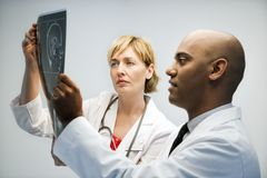 врачи читая рентгеновский снимок Стоковая Фотография RF