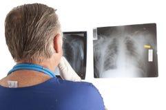 Врачуйте смотреть рентгеновские снимки Стоковое Фото