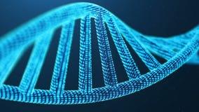 Вращанное 3D представило искусственную молекулу ДНК Intelegence Дна преобразовано в бинарный код Геном бинарного кода концепции иллюстрация штока