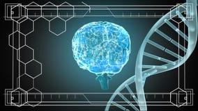 Вращать ДНК и мозга иллюстрация вектора