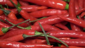Вращать много перцев красного Chili сток-видео