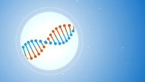 Вращая молекула ДНК сине-апельсина Футуристический взгляд в микроскоп иллюстрация штока