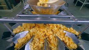 Вращая трубка двигает хрустящие корочки картошки в контейнер для сортировать видеоматериал