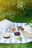 Временя зеленой травы ягод хлебопекарни плодоовощ еды стиля Instagram пикника Стоковое Изображение