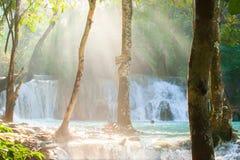 Временя, световые лучи через тропические деревья вокруг воды стоковая фотография rf