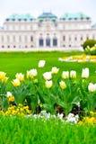 Время весны дворца бельведера Стоковая Фотография