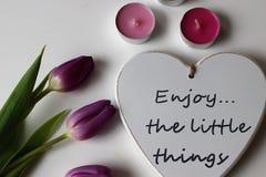 Время весны, цвета весны, цветки и свечи, пинк, пурпур, симпатичное время, славный запах, симпатичные цвета, романтичные цвета, в Стоковые Изображения
