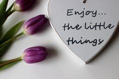 Время весны, цвета весны, цветки и свечи, пинк, пурпур, симпатичное время, славный запах, симпатичные цвета, романтичные цвета, в Стоковое Изображение