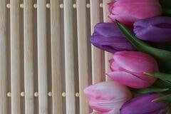 Время весны, цвета весны, цветки и свечи, пинк, пурпур, симпатичное время, славный запах, симпатичные цвета, романтичные цвета, в Стоковое Изображение RF