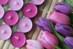 Время весны, цвета весны, цветки и свечи, пинк, пурпур, симпатичное время, славный запах, симпатичные цвета, романтичные цвета, в Стоковое фото RF