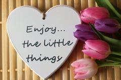 Время весны, цвета весны, цветки и свечи, пинк, пурпур, симпатичное время, славный запах, симпатичные цвета, романтичные цвета, в Стоковые Фото