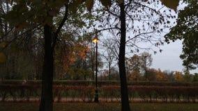 Время в парке города в вечере акции видеоматериалы