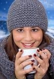 Время зимы стоковые фото