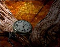 Время и живая ткань Стоковые Фотографии RF