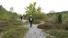 Время осени в поле камня огнива Neu Mukran (острова) Rugen, Германии Feuersteinfeld видеоматериал