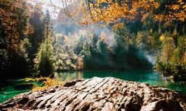 Время осени на blausee озера леса Стоковая Фотография