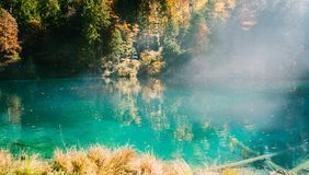Время осени на blausee озера леса Стоковое Изображение