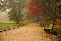 время осени Стоковая Фотография