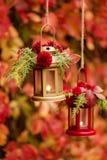 Время падения древесина pomegranate в октябре виноградин украшения каштана осени Подсвечники в форме lanter Стоковая Фотография