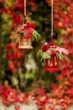 Время падения древесина pomegranate в октябре виноградин украшения каштана осени Подсвечники в форме lanter Стоковое Изображение RF