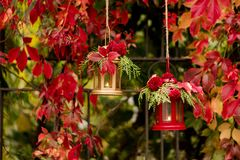 Время падения древесина pomegranate в октябре виноградин украшения каштана осени Подсвечники в форме lanter Стоковые Изображения
