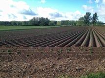 Время поля земледелия весной около Бургоса Стоковые Фото