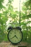 время природы Стоковое Изображение RF